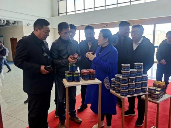 北京援青团队赴当雄考察交流牦牛净土产业